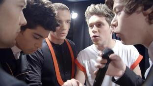 Niall Horan, Zayn Malik, Liam Payne, Harry Styles y Louis Tomlinson son �One Direction�