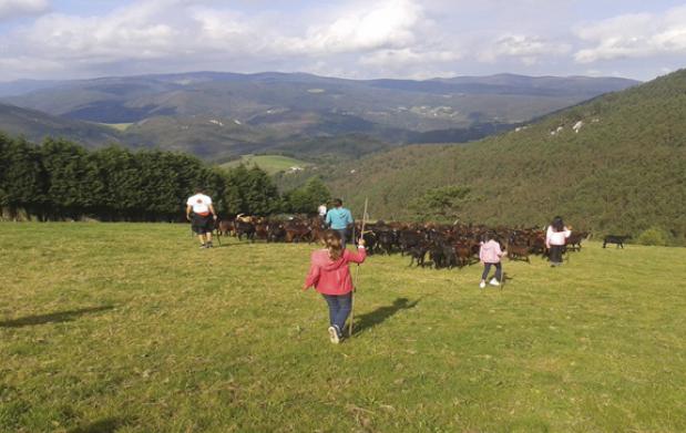 Escapada rural para dos o familias a Asturias