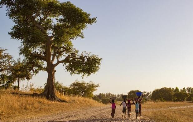 Exótico viaje a Senegal, 8 días/7 noches