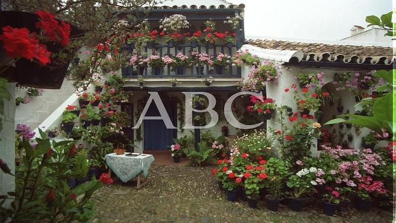C�rdoba. 07/05/2001. Patio de la calle San Juan de Palomares galardonado con el Primer Premio de Arquitectura Antigua del Concurso Patios de C�rdoba