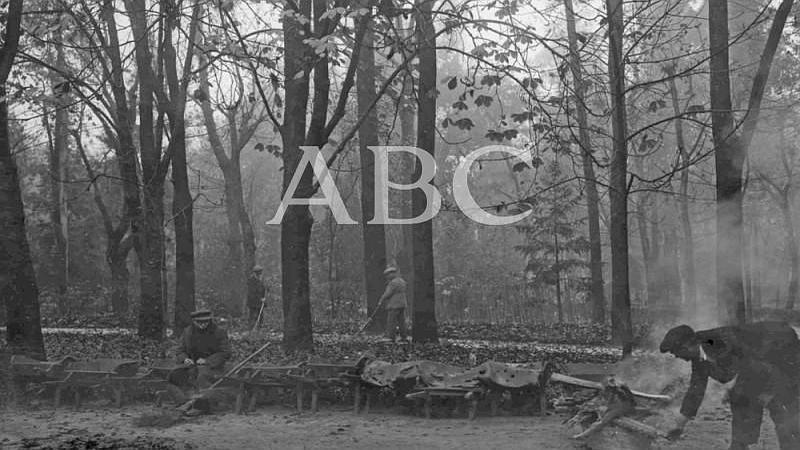 Madrid. 1910. (CA.) Limpieza de hojas en el Parque del Retiro