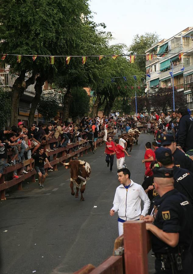 Emoción y espectáculo en los encierros de Leganés