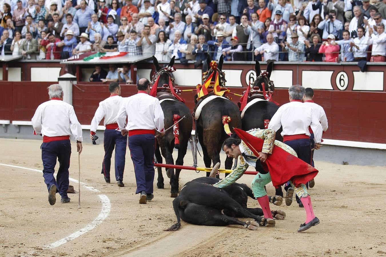 El triunfo de David Mora con un gran alcurrucén en Las Ventas, en imágenes
