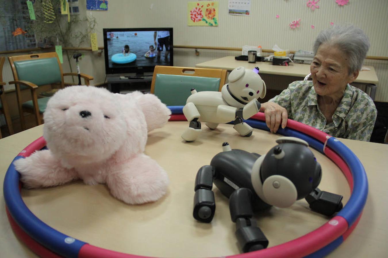 Los perros electrónicos Aibo y la foca Paro tienen fines terapéuticos porque dan compañía a los ancianos