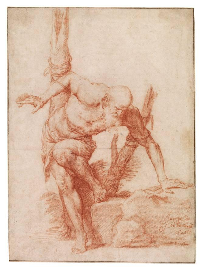 «Santo atado a un árbol (¿San Alberto?)», de José de Ribera. Sanguina sobre papel blanco, 1626