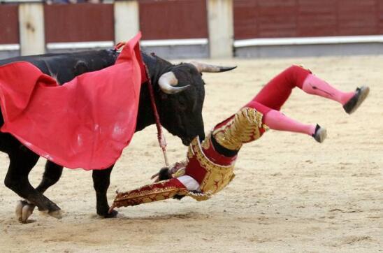 10/05/2010.- El novillero Juan del Álamo cae frente a su segundo astado de la tarde