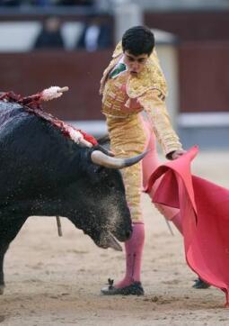 10/05/2010.- El novillero Miguel de Pablo da un pase con la muleta a su segundo astado