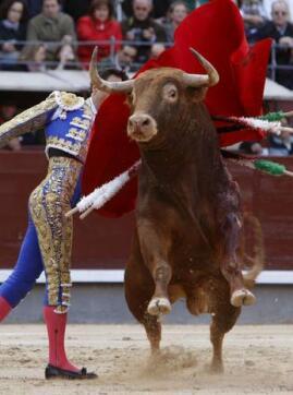 14/05/2010.- El diestro Manuel Jesús «El Cid» da un pase con la muleta a su primero