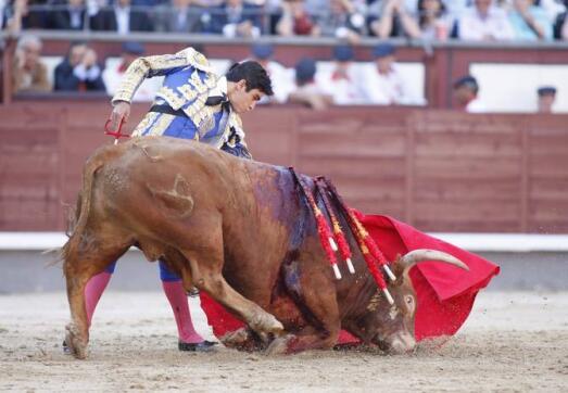 25/05/2010.- El diestro Miguel Ángel Perera da un pase con la muleta