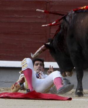 11/05/2010.- El diestro mexicano Arturo Macías es volteado por su primero
