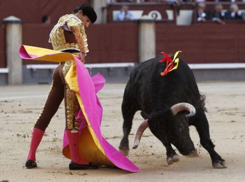 """18/05/2010.- El diestro Manuel Jesús """"El Cid"""" da un pase con el capote a uno de sus astados"""