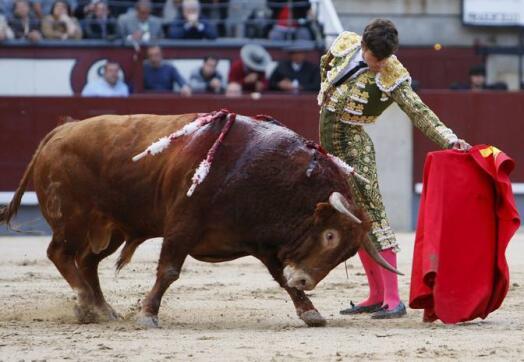 06/05/2010.- El diestro salmantino Eduardo Gallo, durante la faena a su primer astado