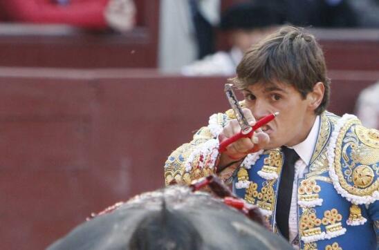 14/05/2010.- El diestro Miguel Tendero entra a matar a su primero