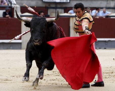 """27/05/2010.- El diestro José Pedro Prados """"El Fundi"""" torea al natural al primero de su lote"""