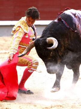 28/05/2010.- El diestro Francisco Javier Corpas da un pase con la muleta a uno de sus toros