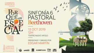 Entradas Camerata Musicalis Madrid - Beethoven
