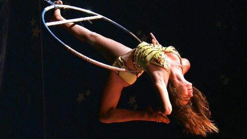 Entradas Circo Gottani Madrid
