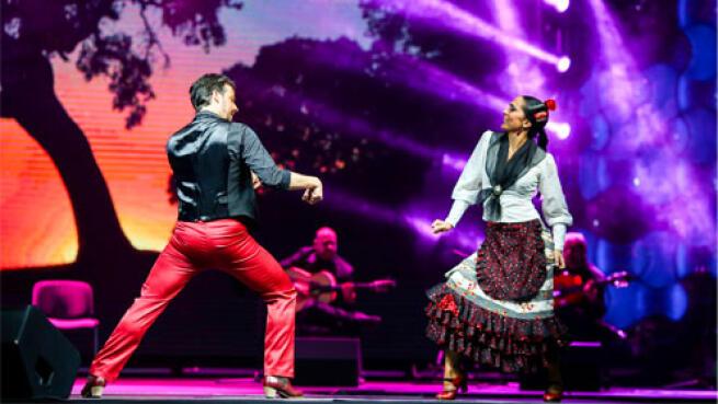 Entradas Emociones Flamenco Madrid