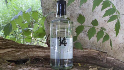 2 botellas de Ginebra 14